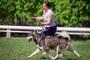 Isleta - Championem Ukrainy