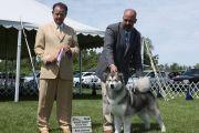 Orono Dog Show, Kanada